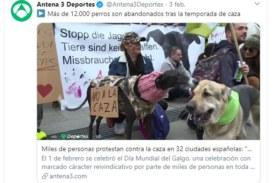 La RFEC solicita a Antena 3 la celebración de un debate en directo para aclarar el tema de los abandonos de perros
