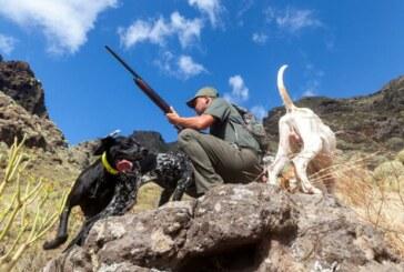 La caza mantiene uno de cada tres perros