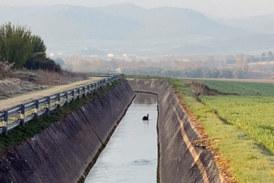 Dos ertzainas se lanzan al canal de Argomaniz para intentar salvar a un corzo