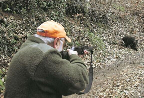 Se podrá cazar para evitar daños cinegéticos