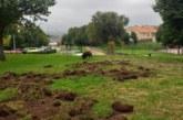 Cazadores reclaman anticipación en la campaña contra los daños del jabalí