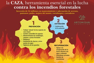 Artemisan  reivindica la labor de los cazadores como pieza clave en la lucha contra incendios forestales