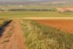 Buenas prácticas agrícolas para la caza