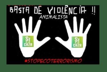 La ONC presenta en el Congreso una propuesta de reforma de los delitos de odio contra los cazadores