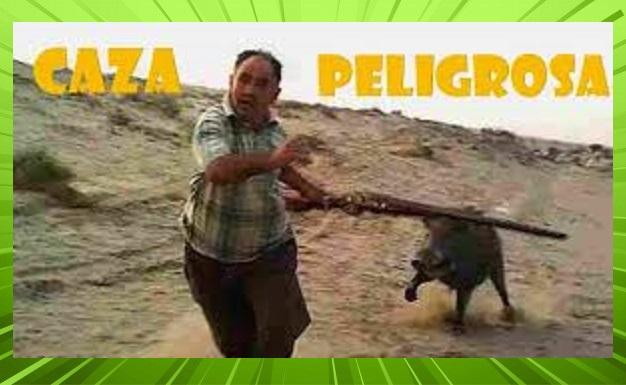 El peligro de los ataques de animales a cazadores y personas que no lo son (Ver video)