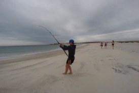 VÍDEO: Un adolescente pesca un tiburón de tres metros en una playa y termina cogiéndolo con las manos
