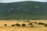 Fundación Artemisan inicia una ronda de reuniones para alertar sobre las graves consecuencias de prohibir la caza en Parques Nacionales