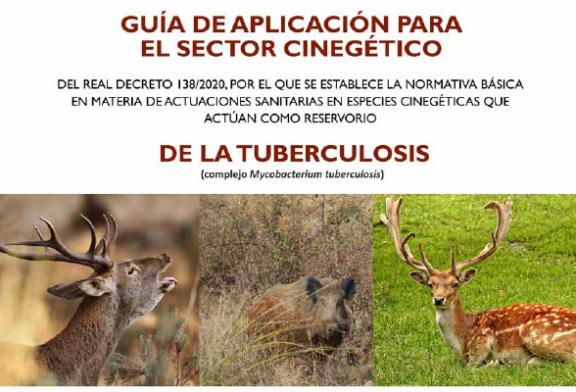 Publicada una guía de aplicación de la normativa básica de actuaciones sanitarias para el control de tuberculosis en especies cinegéticas