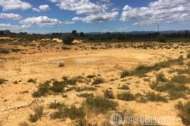 Denuncian al coto de caza de Junquera y la Milla de Tera por suministrar agua a la fauna silvestre