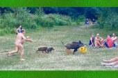 La carrera de un nudista tras un jabalí se convierte en viral