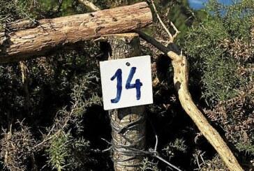 Entra en vigor la nueva orden foral que declara Ulia zona libre de caza