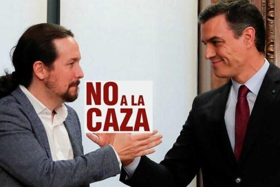 El Gobierno español votará a favor de la modificación del REACH que vulnera derechos fundamentales de los cazadores