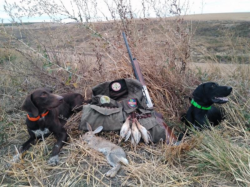 La media veda propicia valoraciones desiguales en función de las zonas de caza