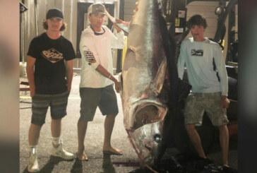 EE.UU. Jóvenes pescan atún de 318 kg tras una lucha de 7 horas