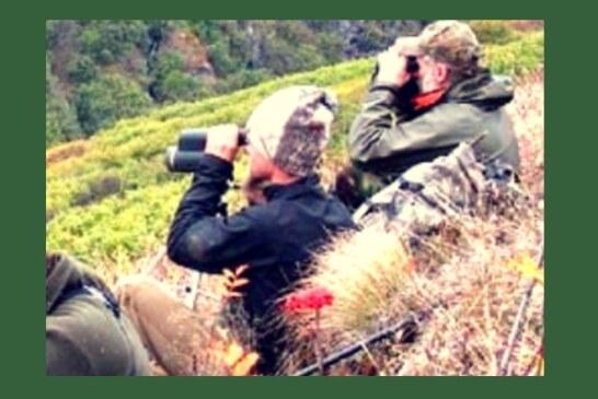 El Observatorio Cinegético se prepara para los censos de caza mayor