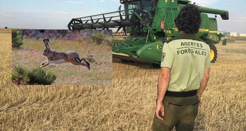 Fundación Artemisan considera que la nueva PAC marcará un antes y un después para la caza