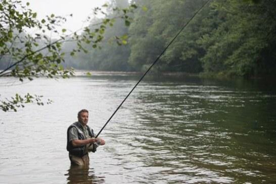 El Principado prevé reducir en 2021 los cupos de pesca de trucha y salmón