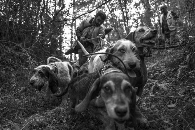 La caza como actividad esencial