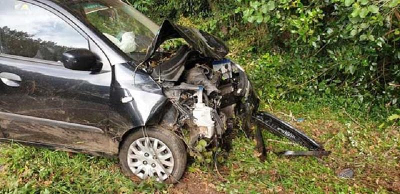 Un conductor, herido tras atropellar a un jabalí que cruzó la calzada