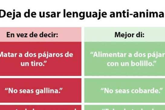 La nueva y absurda petición animalista: «Deja de usar el lenguaje anti-animal»