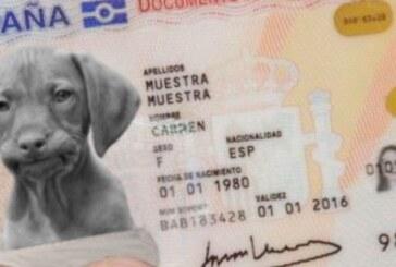 El Gobierno hará obligatorio un DNI electrónico con registro e ADN para animales de compañía