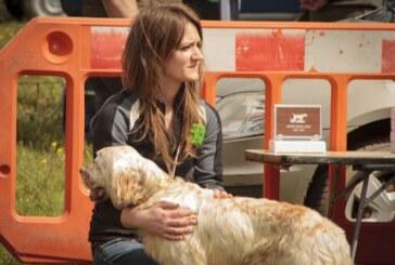 El estudio de Affinity de 2020 vuelve a desmontar las mentiras animalistas sobre el abandono de perros de caza