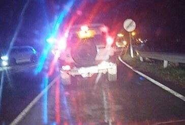 Dos heridos al chocar una motocicleta con un corzo en La Rioja