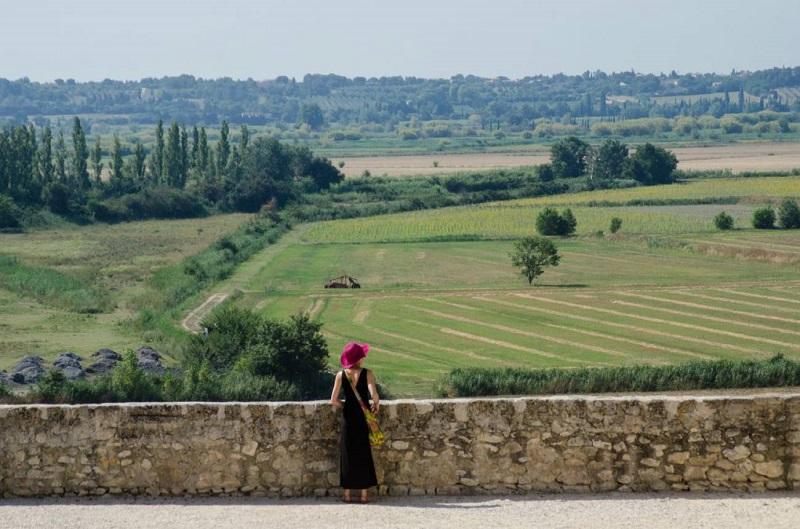 Francia pone a salvo el cacareo de los gallos y el olor a establo