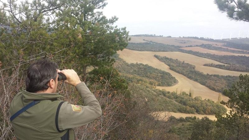 Alarma! La Unión Europea propone prohibir la caza en el 10% de su territorio. La RFEC traslada al Gobierno de España su rechazo