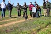El sector cinegético apuesta por la conservación del lince ibérico a través del proyecto LIFE LynxConnect