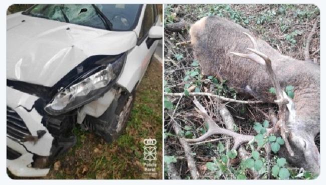 Dos heridos leves tras atropellar a un ciervo en la N13