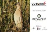 El proyecto Coturnix recoge más de 10.000 muestras de codorniz gracias a cazadores de toda España