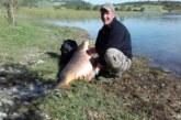 La pesca de ciprínidos en embalses atrae a un número creciente de aficionados