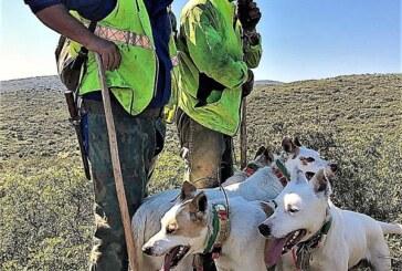 La Asociación Española de Rehalas presenta alegaciones a la propuesta de crear un sistema nacional de registros de proteccion animal