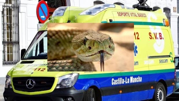 Ingresa en el hospital de Toledo un hombre por la mordedura de una serpiente
