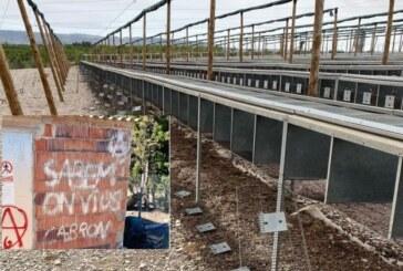 ¡Impunidad! Ante la pasividad judicial animalistas asaltan varias granjas de perdices