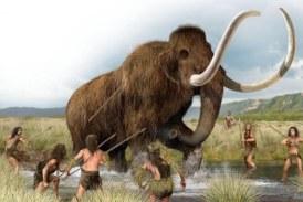 Fuimos hipercarnívoros durante dos millones de años