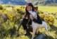 Parlamentarios europeos desmontan la mentira animalista de los perros de caza tras la denuncia de la RFEC