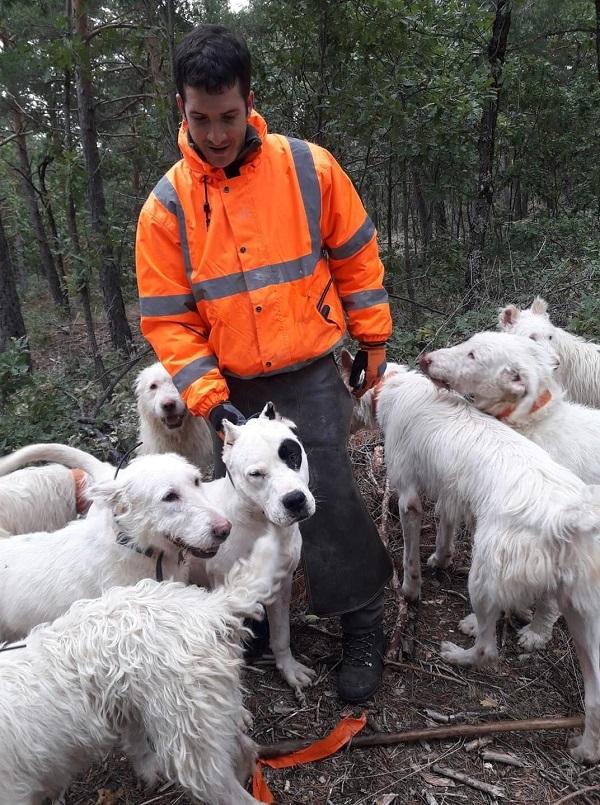 Navarra: la asociación española de Rehalas demanda un uso racional y eficiente de los perros en la orden de vedas 2021/2022