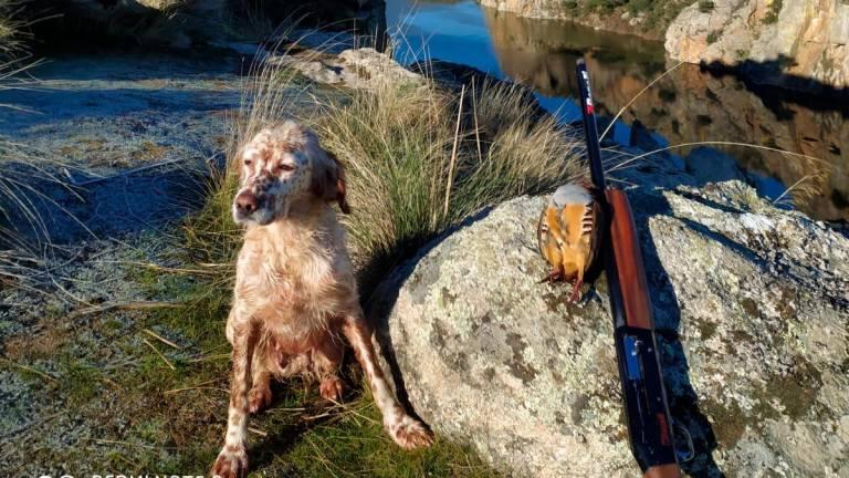 Así son los sueños de un cazador