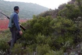 Sindicato agrario pide autorizar la caza nocturna de conejo en la Rioja