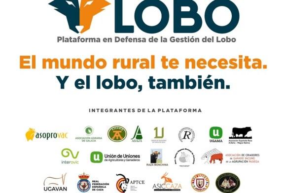 Ganaderos y asociaciones del mundo rural unen fuerzas para reclamar una convivencia sostenible con el lobo ibérico