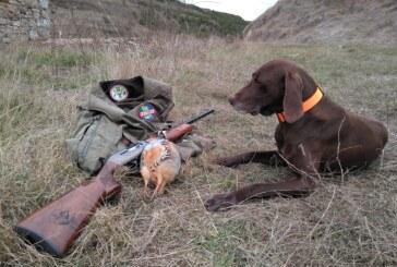 El sector cinegético exige al Gobierno de España una respuesta firme a Europa ante la intención de prohibir la caza de la perdiz roja