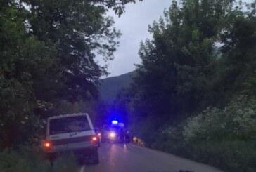 Grave ataque de un oso a una mujer de 75 años en Cangas del Narcea