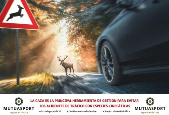 Mutuasport lanza un vídeo sobre la necesidad de la caza  ante los accidentes de tráfico
