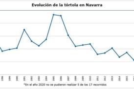 La abundancia actual de población de la tórtola en Navarra es similar a la del año 1996