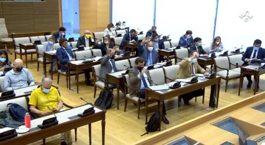 La Comisión de Transición Ecológica instará al Gobierno a conservar la tórtola contando con el sector cinegético