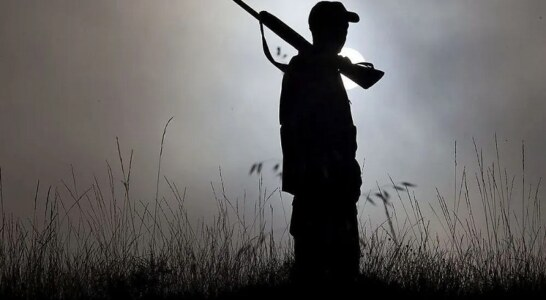 Nace el 'cupo cero' en la caza para salvar a aves silvestres