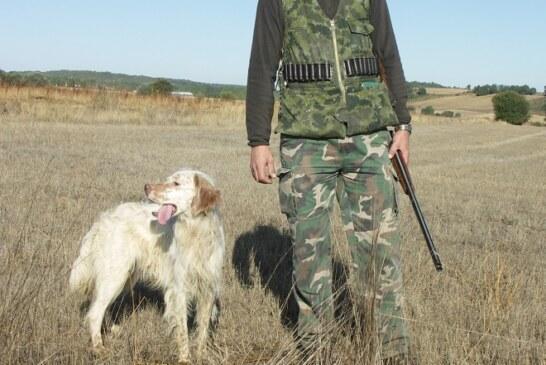 Los perros deben afrontar el arranque de la media veda con preparación y cuidados específicos
