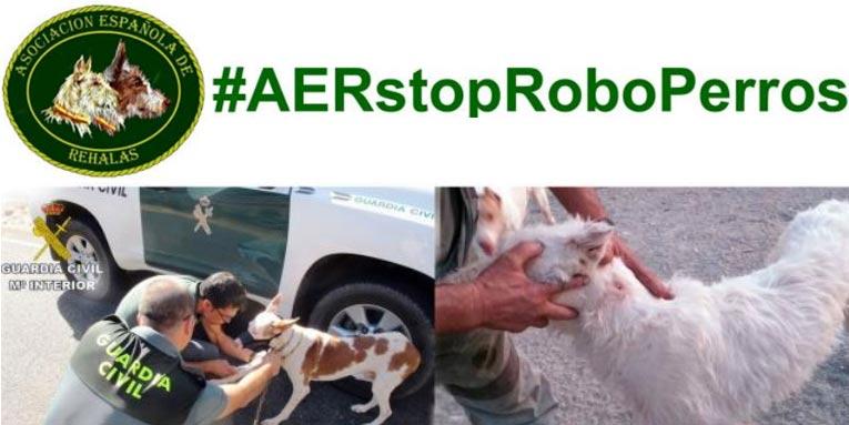 La Asociación Española de Rehalas contra el robo de perros